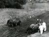 corra-49-swiss-chalet-park-1972-ontario-off-road