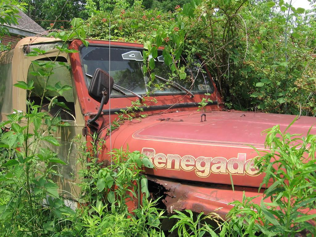 jeep renegade, renegade, junkyard jeep