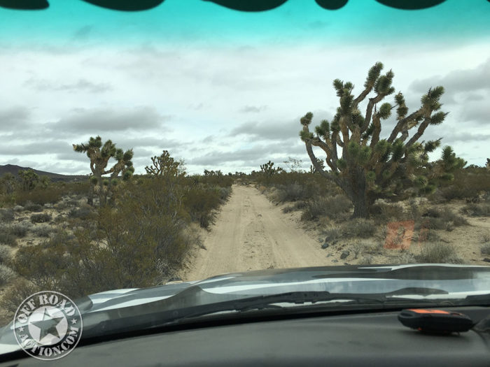mojave-trail-off-road-action-01_05